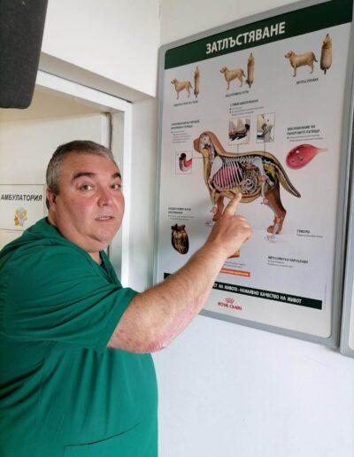 Д-р Здравко Димитров показва постер насочен към затлъстяването при домашните любимци
